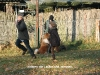 2011-11-13 Wesenstest Anouk - 39