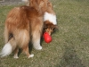 2012-03-09 Futterkegel - 11