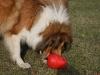 2012-03-09 Futterkegel - 15
