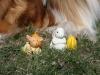 2012-03-28 Ostern - 11