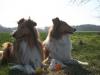 2012-03-28 Ostern - 2