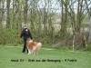 2012_04_21_Peiner_Eulen - Anouk - 33