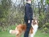 2012_04_21_Peiner Eulen - Grace - 58