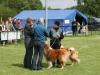 2012-05-12 GHS Wob - Grace - 28