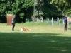2012-05-20 PHV Misburg - Anouk - 62