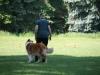 2012-05-20 PHV Misburg - Grace - 14