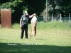 2012-05-20 PHV Misburg - Grace - 21