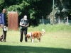 2012-05-20 PHV Misburg - Grace - 22