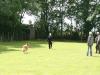 2012-06-02 DV Wesermünde - Grace - 29