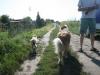 2012-07-24 Garten - 20
