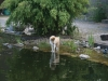 2012-07-27 Schwimmen - 31