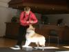 2012-09-28-obedience-seminar-10