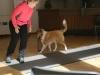 2012-09-28-obedience-seminar-21