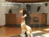 2012-09-28-obedience-seminar-22