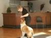 2012-09-28-obedience-seminar-23