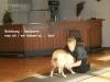 2012-09-28-obedience-seminar-26