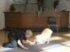 2012-09-28-obedience-seminar-29