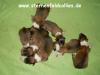 2012-10-22 H-Wurf - Meerschweinchenbande - 4
