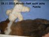 2012-11-28 H-Wurf Hatschi-Pooh - 7