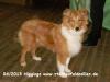 2013-06-26 Higgings - 2_2