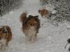 2012-12-02 Milana und Anouk - 3