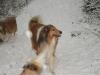 2012-12-02 Milana und Anouk - 4