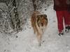 2012-12-02 Milana und Anouk - 5