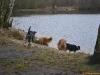2012-01-08 Hunderunde - 55