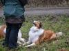 2012-01-08 Hunderunde - 8