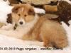 2013-03-31-peggy-3