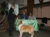 2012-01-13 Willich - 17