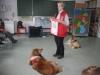 2013-03-14 Grundschule im Kleegarten - 10
