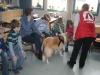 2013-03-14 Grundschule im Kleegarten - 17