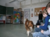 2013-03-14 Grundschule im Kleegarten - 28