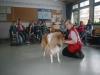 2013-03-14 Grundschule im Kleegarten - 35