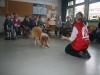 2013-03-14 Grundschule im Kleegarten - 37