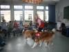 2013-03-14 Grundschule im Kleegarten - 46
