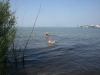 2013-07-19-bodensee-12