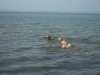 2013-07-19-bodensee-17