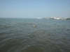 2013-07-19-bodensee-26
