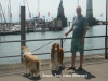 2013-07-19-bodensee-31