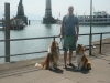 2013-07-19-bodensee-33