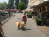 2013-07-19-bodensee-37