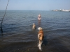 2013-07-19-bodensee-7
