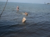 2013-07-19-bodensee-9