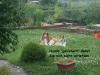 2013-07-30 Sturmschaden Garten