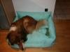 2013-12-20 Hundebetten - 3