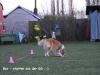 2014-03-20-training-19