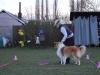 2014-03-20-training-27