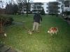 2009-12-27 - A-Wurf, 31. Tag (45)